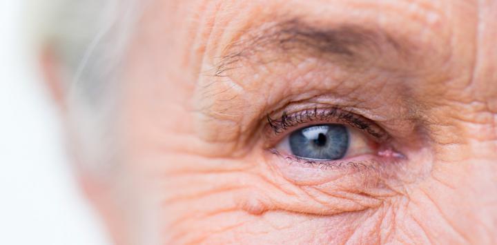 Monográfico envejecimiento cognitivo