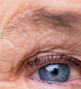 curso online envejecimiento cognitivo